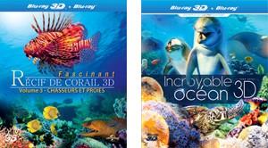 Le grand bleu 3D : plongée en eaux claires