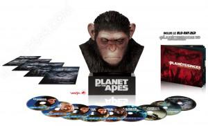 La planète des singes, l'affrontement : coffrets Warrior et Primal en plus
