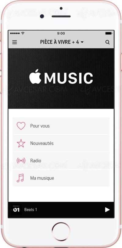 La musique adoucit les mœurs : étude sur l'impact de la musique à la maison