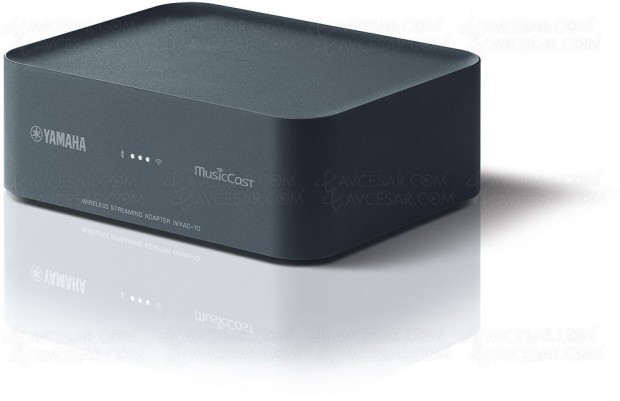 Yamaha WXAD-10 MusicCast multiroom, module réseau Bluetooth/AirPlay/Wi-Fi/DLNA…