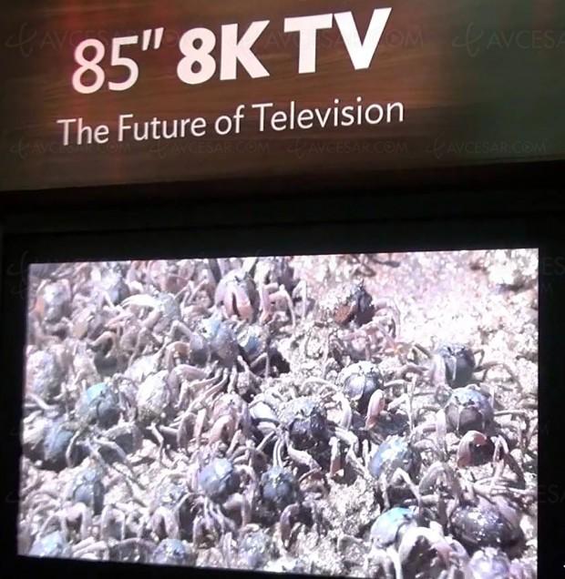 Foxconn investit 9 milliards de dollars et parie sur la technologie 8K