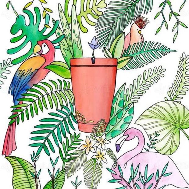 Pot Parrot : arrosage connecté pour vous laisser déconnecter tranquille