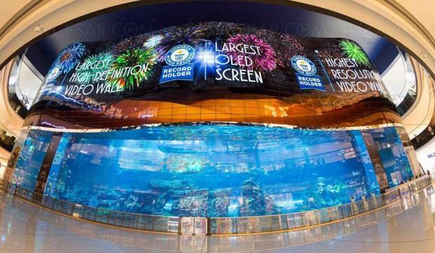Le plus grand écran Oled LG, 50 m et 1,7 milliard de pixels, est à Dubaï