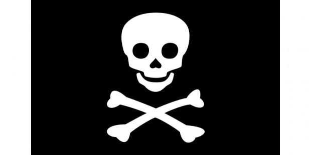 6,5% des Américains piratent les chaînes TV payantes