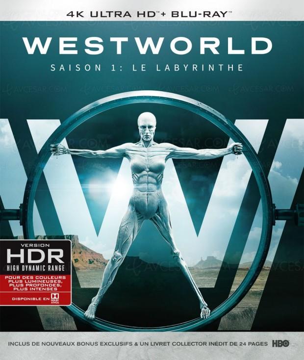 Westworld, test 4K Ultra HD Blu-Ray en ligne