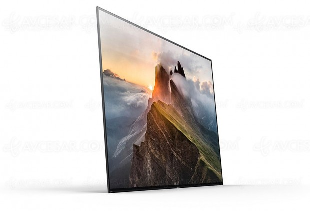 Soldes hiver 2018 Darty, TV Oled Ultra HD Sony KD‑55A1 à 2 490 €, soit 500 € d'économie