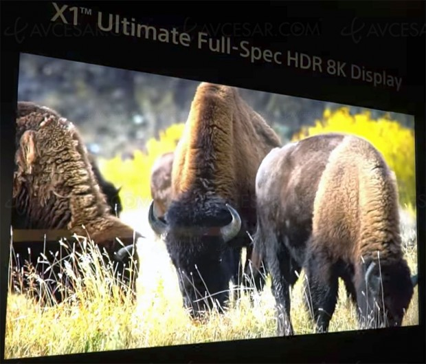 CES 18 > TV LCD 8K 85'' Sony prototype HDR 10 000 nits et processeur X1 Ultimate, ça vaut le détour !