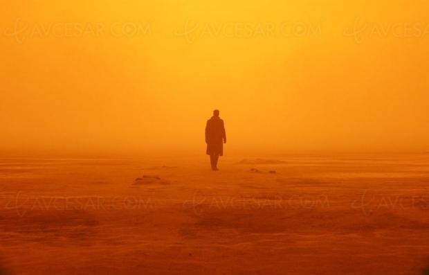 Test 4K Blade Runner 2049 en ligne