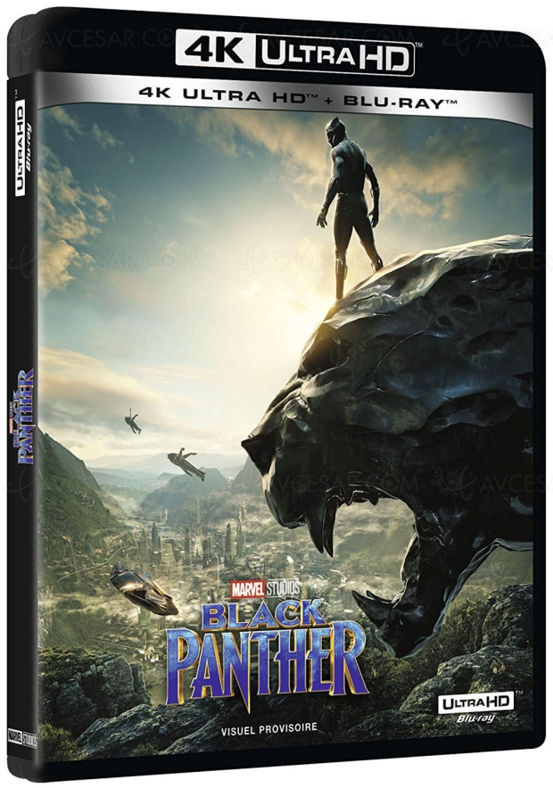 Black Panther 4K Ultra HD Blu-Ray toutes griffes dehors
