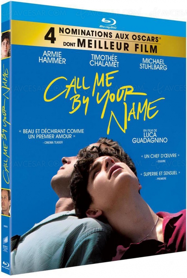 Call me by your Name, pour un amour de vacances