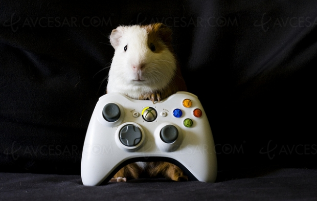 Prochaine(s) console(s) Xbox « Scarlet » finalement dès 2020 ?