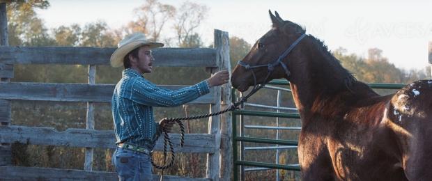 The Rider : itinéraire d'un cow‑boy solitaire