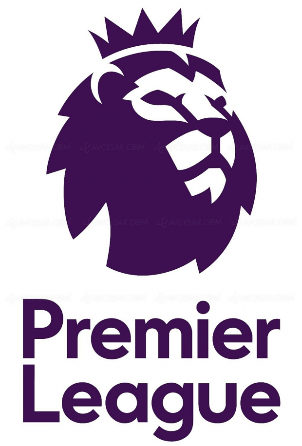Un service de streaming pour la Premier League anglaise ?