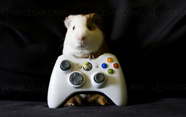 Xbox One S All‑Digital Edition, sortie imminente pour la version sans lecteur Blu‑Ray ?