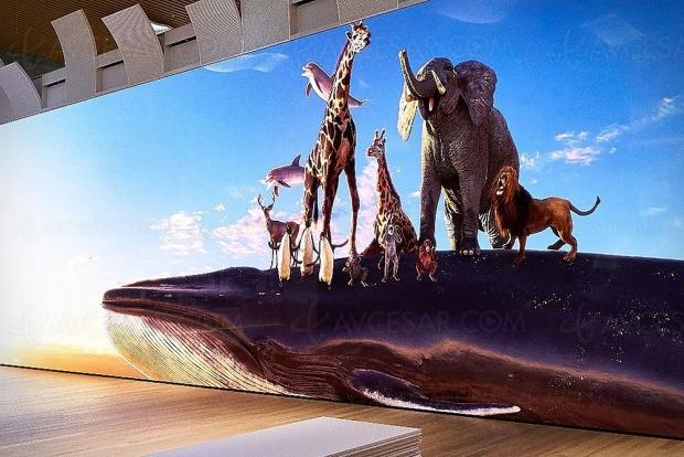 Sony Crystal LED (Cledis) 16K NAB 2019 : 19,2 m de long sur 5,4 m de haut