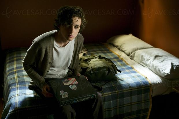 My Beautiful Boy : Timothée Chalamet dans un nouveau rôle puissant