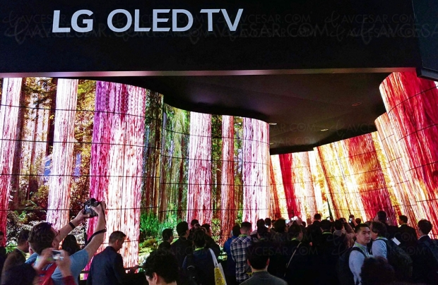 LG investit plus de 2,5 milliards dans l'Oled du futur