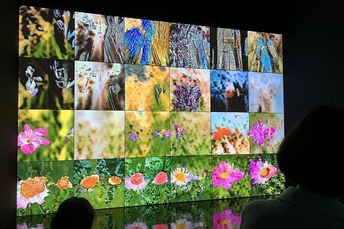 Mori Art Museum : projection Ultra HD/8K au musée numérique japonais