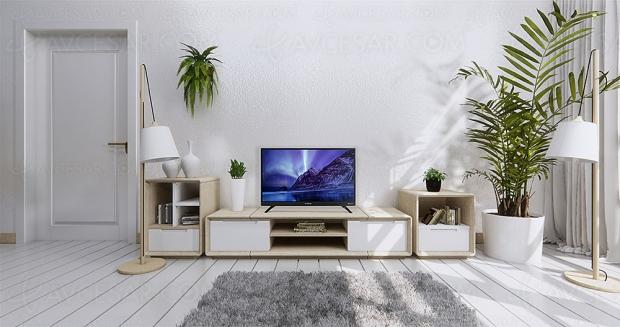 TV LED Schneider SC‑LED32SC500US, 32'' avec barre de son et Netflix intégrés