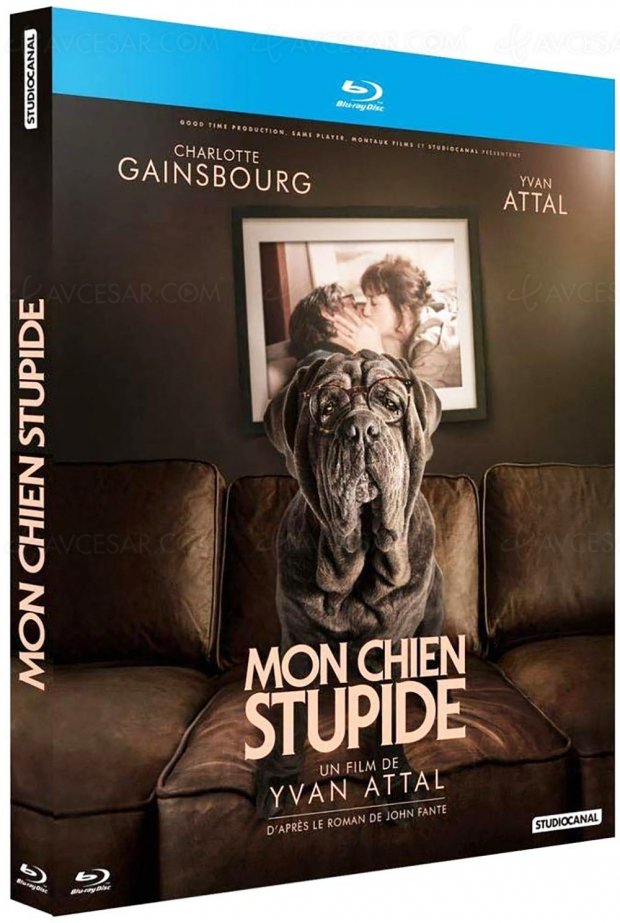 Mon chien stupide, Yvan Attal adapte le roman posthume de John Fante