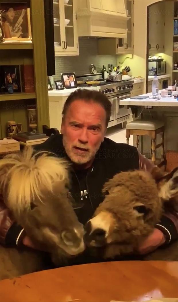 Restez à la maison, le message très spécial d'Arnold Schwarzenegger (vidéo)