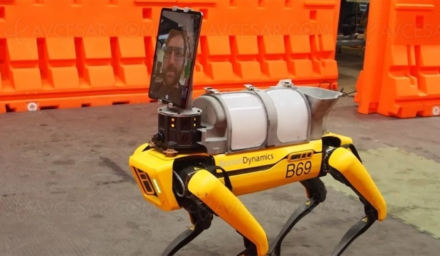 Chien-robot Boston Dynamics VS coronavirus