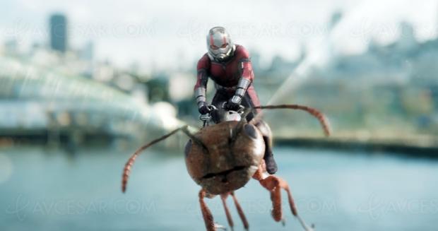 Ant‑Man 3 ? On propose le moustique, trop rarement représenté au cinéma…