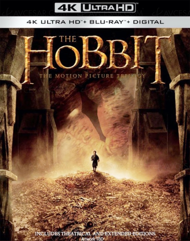 Trilogie The Hobbit 4K Ultra HD dans la hotte du Père Noël ?