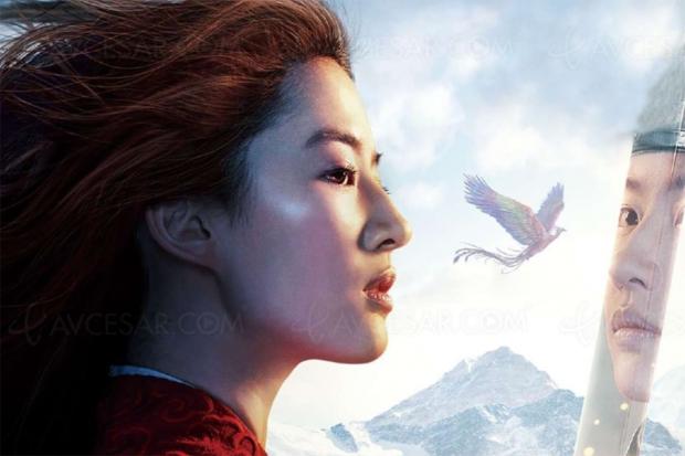 Disney+ en décembre, Soul, Mulan, Cars 3, Star Wars les derniers Jedi… tombent les films de Noël