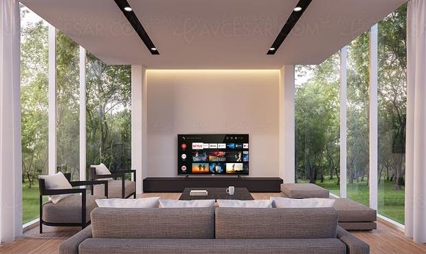 TV LED Ultra HD 4K TCL P610, mise à jour prix