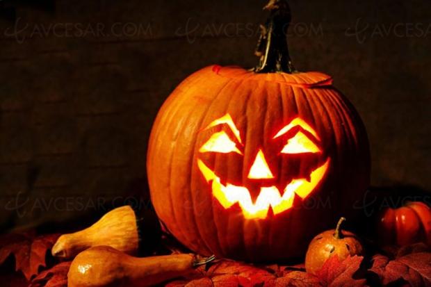 Et le film idéal de Quentin Tarantino pour Halloween est…
