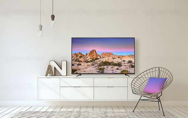 TV LED Ultra HD 4K Thomson UG6400 : quatre modèles Android TV 9.0