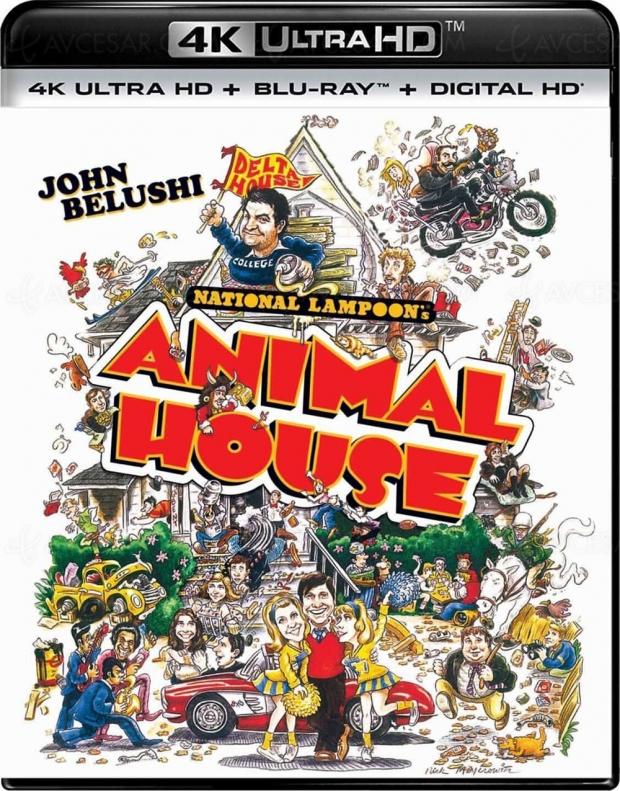 American College : la comédie potache avec John Belushi en 4K Ultra HD