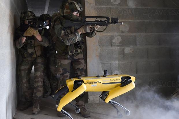Un chien robot dans l'armée française : première rencontre