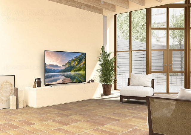 TV LED Ultra HD 4K Panasonic JX800, 40'', 50'', 58'' et 65 au menu