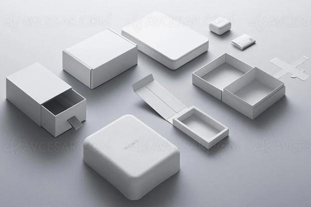 Sony lance son packaging écolo, bientôt partout ailleurs ?