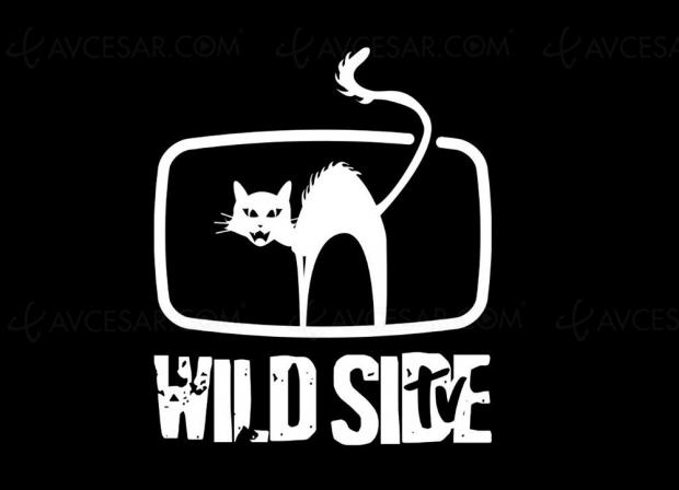 Wild Bunch TV : nouvelle offre de visionnage films et séries gratuite financée par la pub