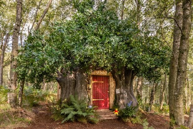 Réservations Airbnb : j'irai dormir chez Winnie l'Ourson