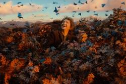 Le Hobbit : la désolation de Smaug (2013)