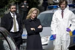 The Fall saison 1 (2013)