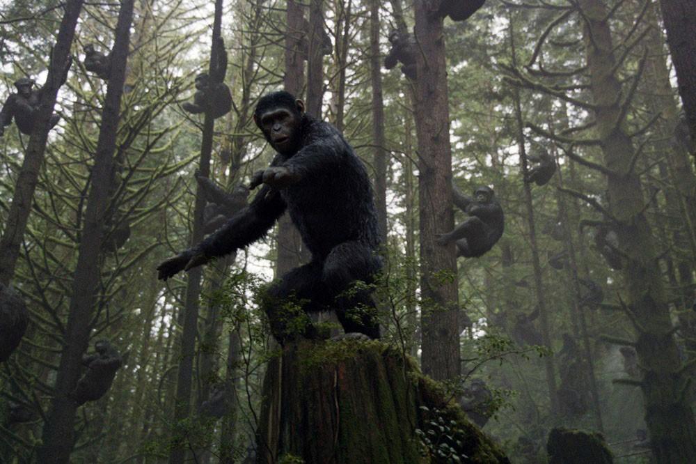 La planète des singes, l'affrontement (2014)