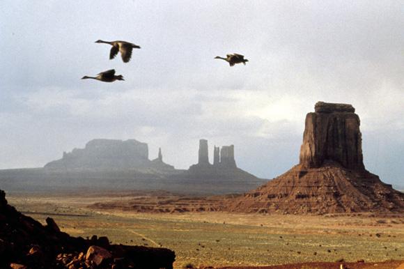 Le peuple migrateur (2001)