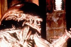 Alien 3 - Coffret Anthologie (1992)