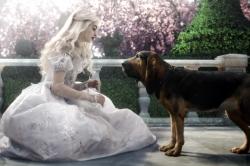 Alice au pays des merveilles 3D (2009)