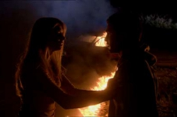 Les griffes de la forêt (2006)