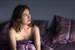 La vie domestique (2013)