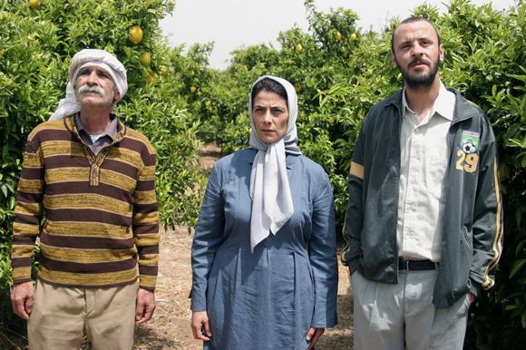 Les citronniers (2008)